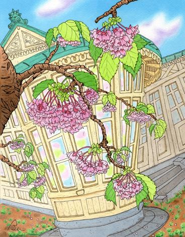 桜と洋館.JPG