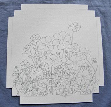 野の花、ペンのみ.jpg